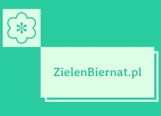 Zielen Biernat - portal poświęcony aktywności fizycznej i zdrowej diecie